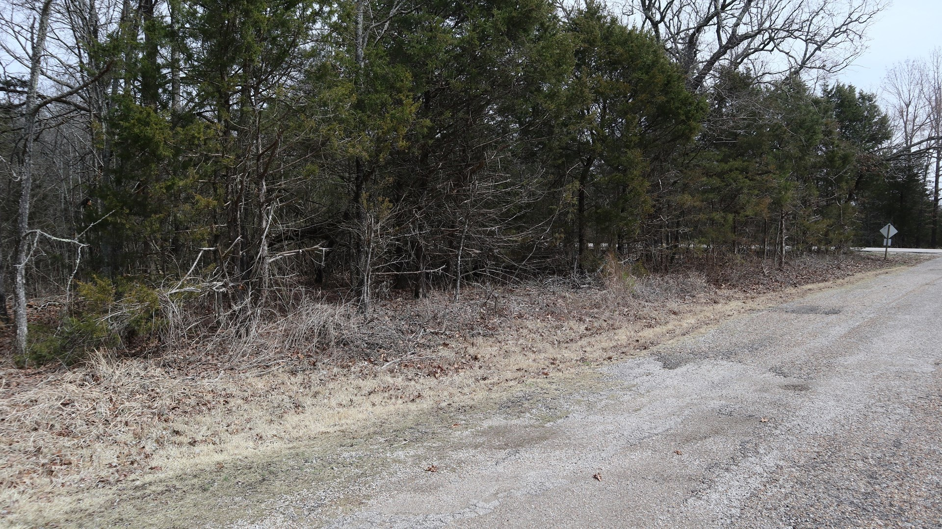 VACANT WOODED LOT NEAR LAKE NORFORK IN ARKANSAS