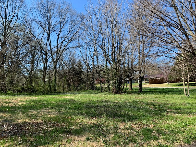Residential Building Lot For Sale in Nevada, MO