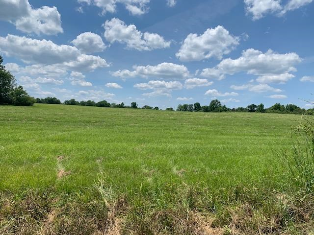 9 Acres of Land For Sale Lincoln County Mississippi Pasture