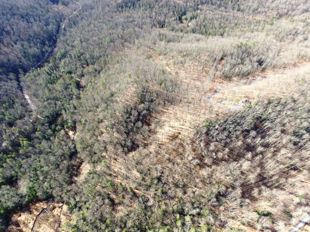 Wooded building or recreational lot in mountains of SWVA