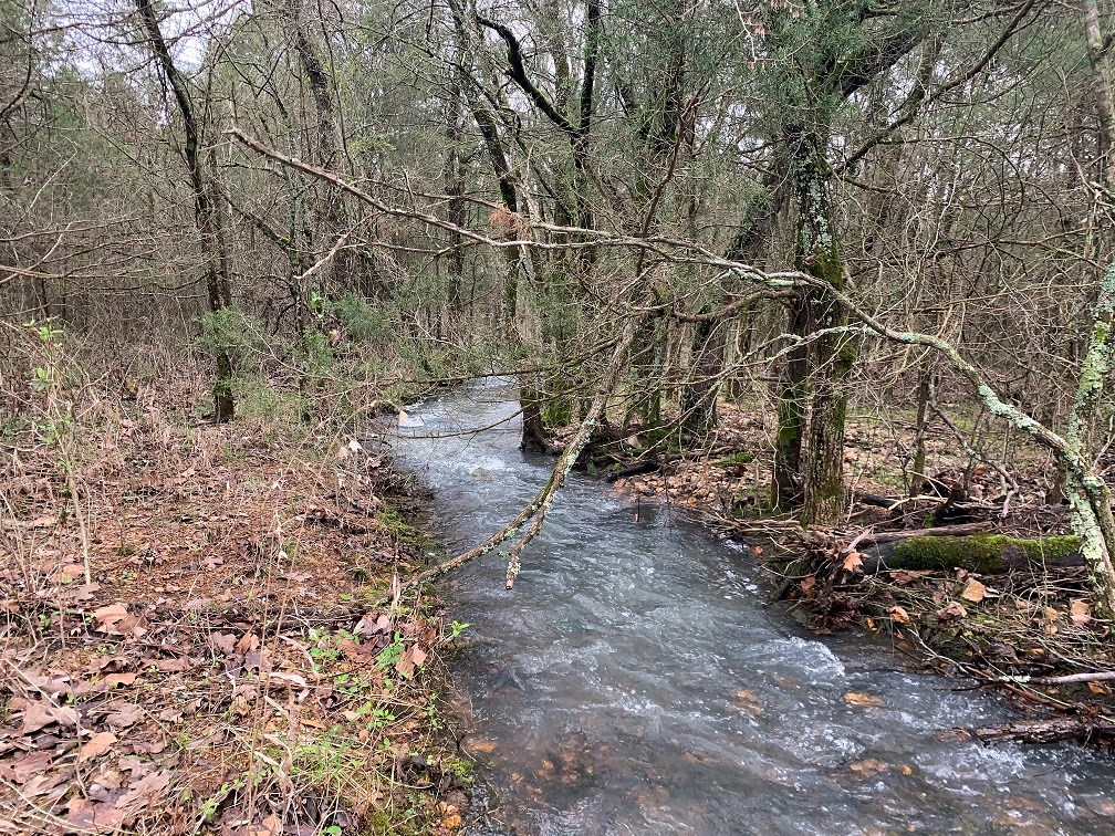 ACREAGE TRACT FOR SALE IN NORTH CENTRAL ARKANSAS