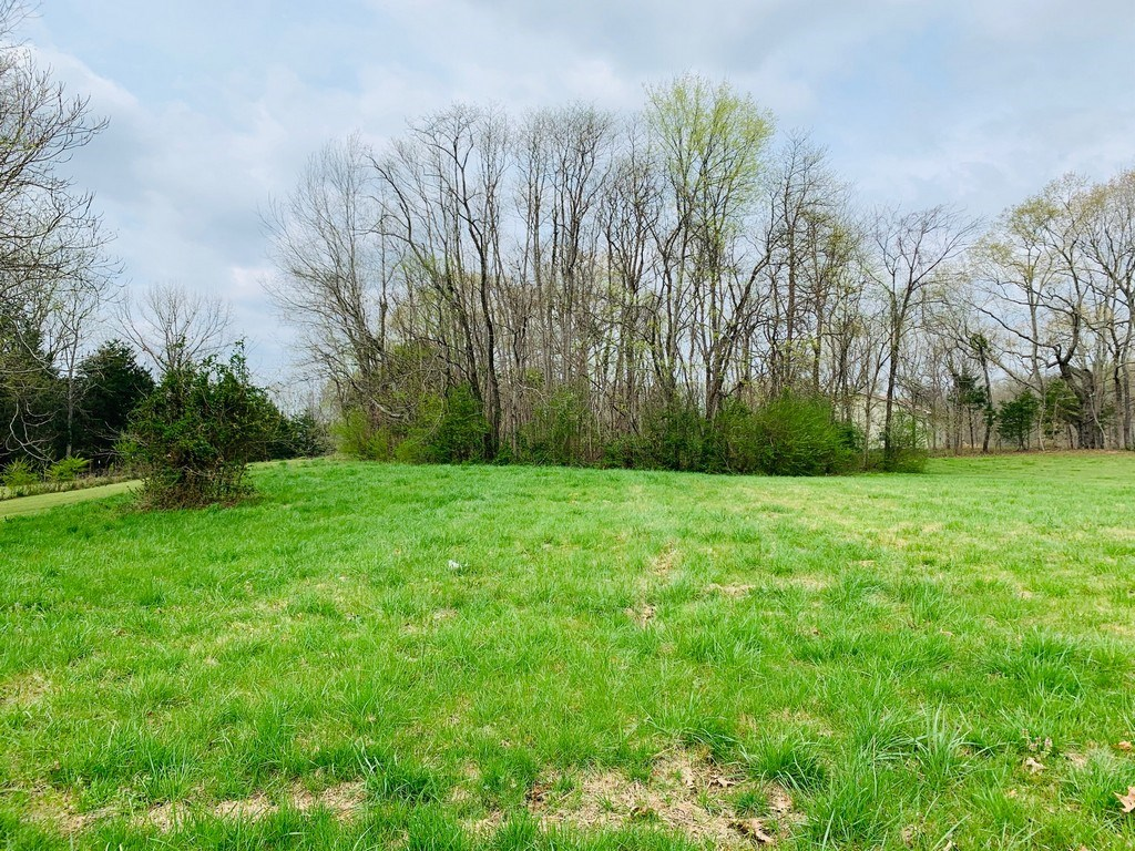 Land for Sale Near the Tennessee River, in Linden, TN