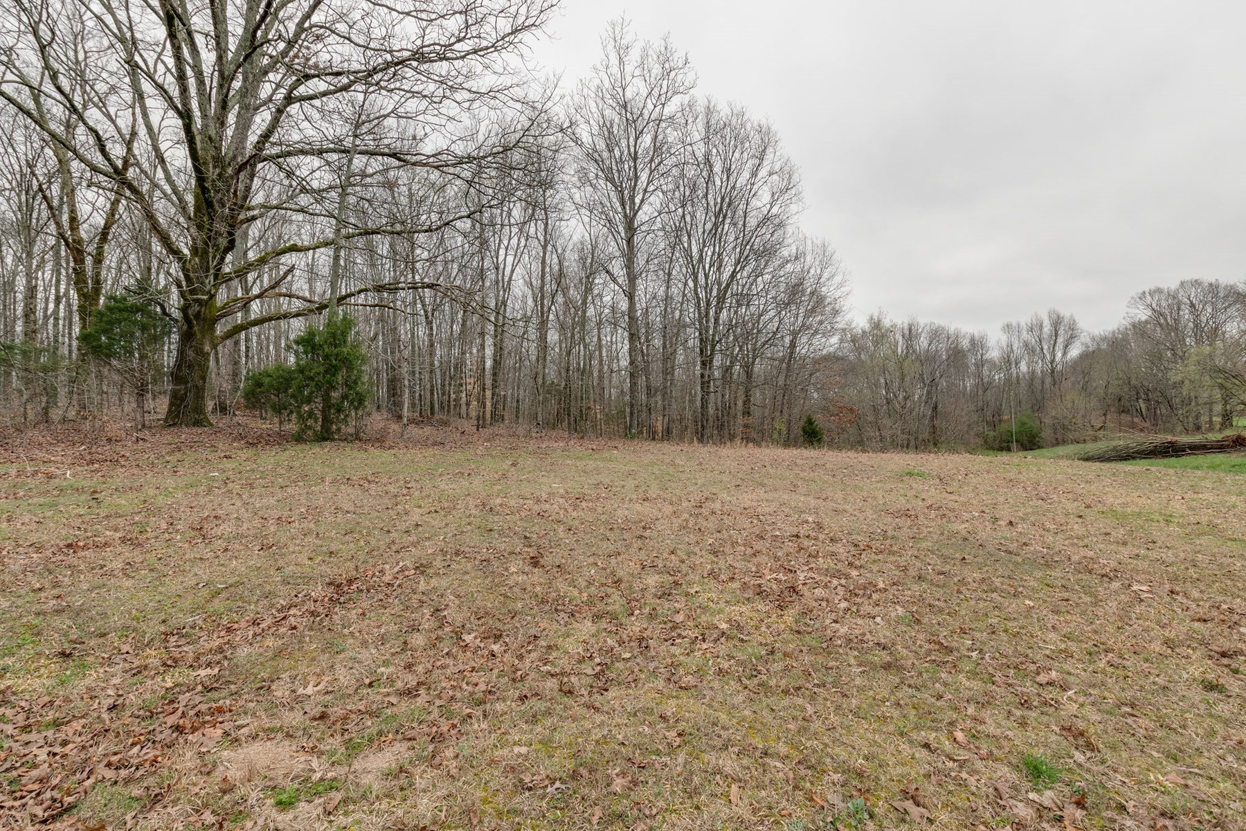 Private Country Setting with Acreage in Mount Pleasant, TN