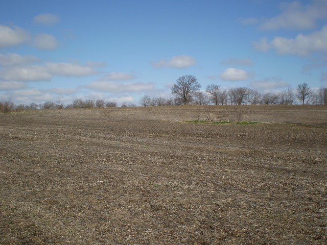 Highly Tillable Farm Land for Sale in Pettis County MO