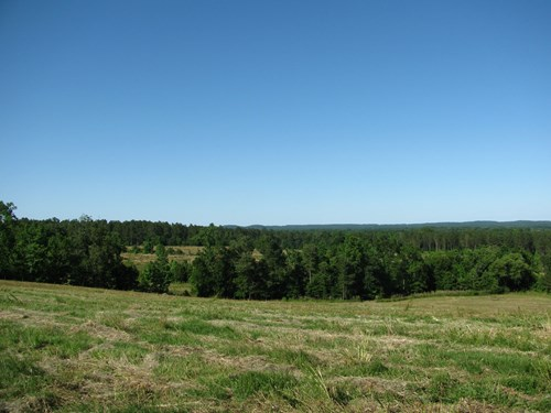 LAND FOR SALE IN TENNESSEE, DUCK PONDS, CREEK, GREAT HUNTING