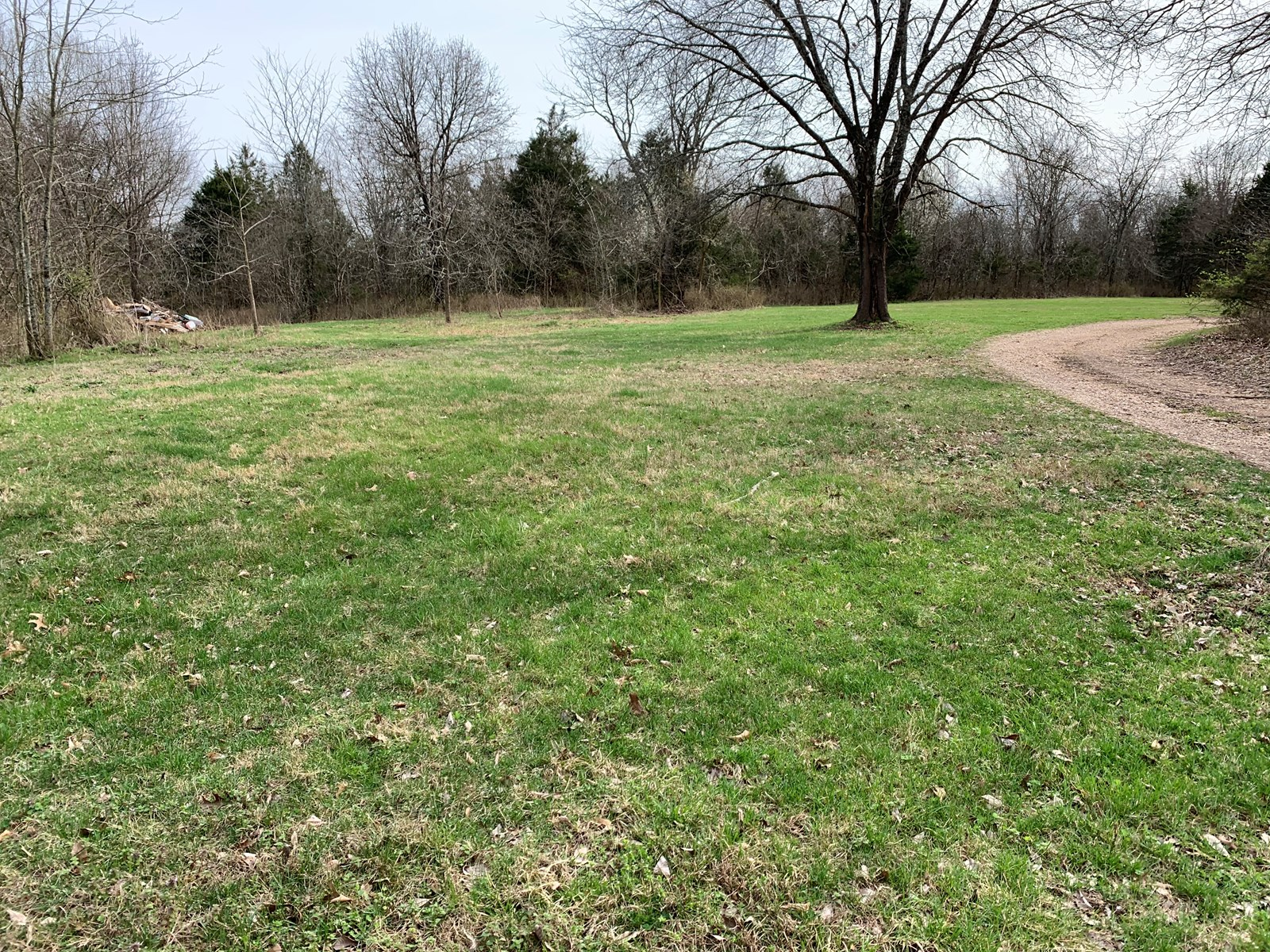 Land For Sale in Clever Missouri!