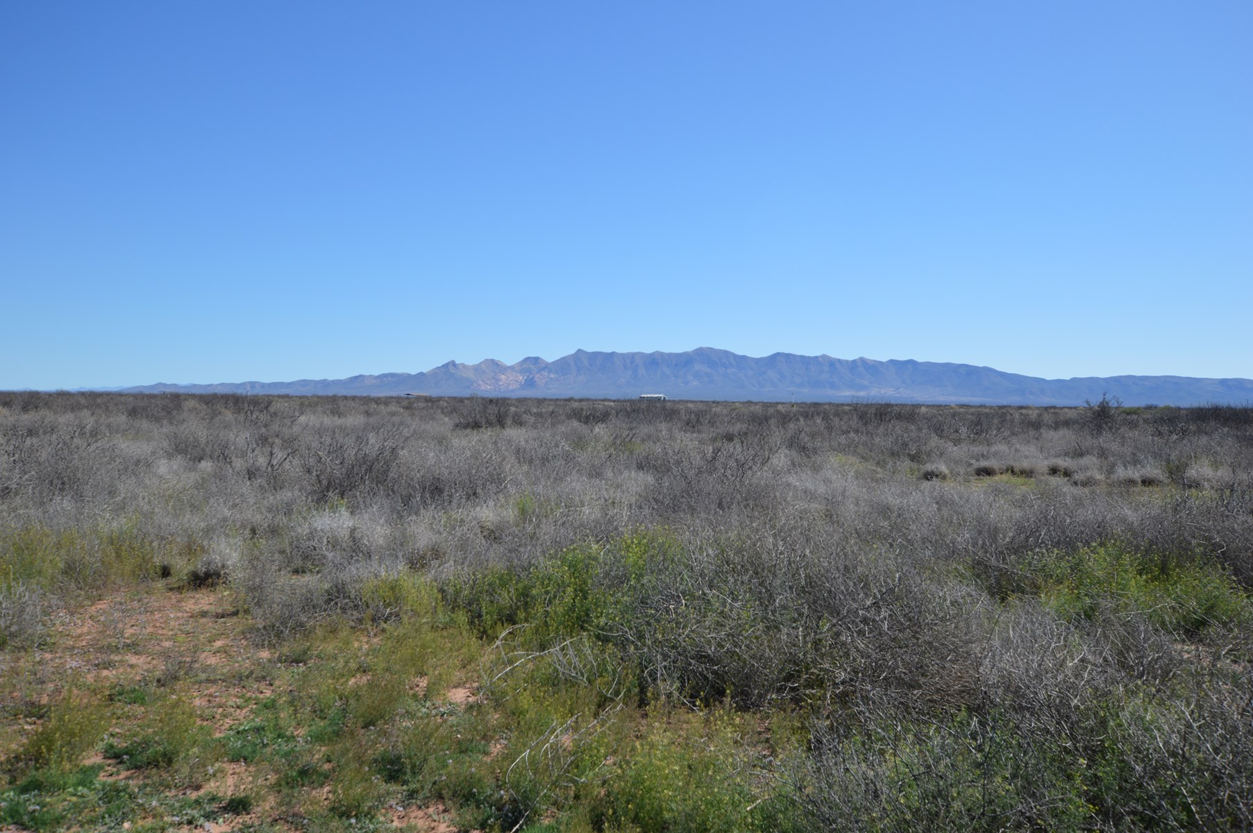 JUST REDUCED!   47 acres vacant land  can be split