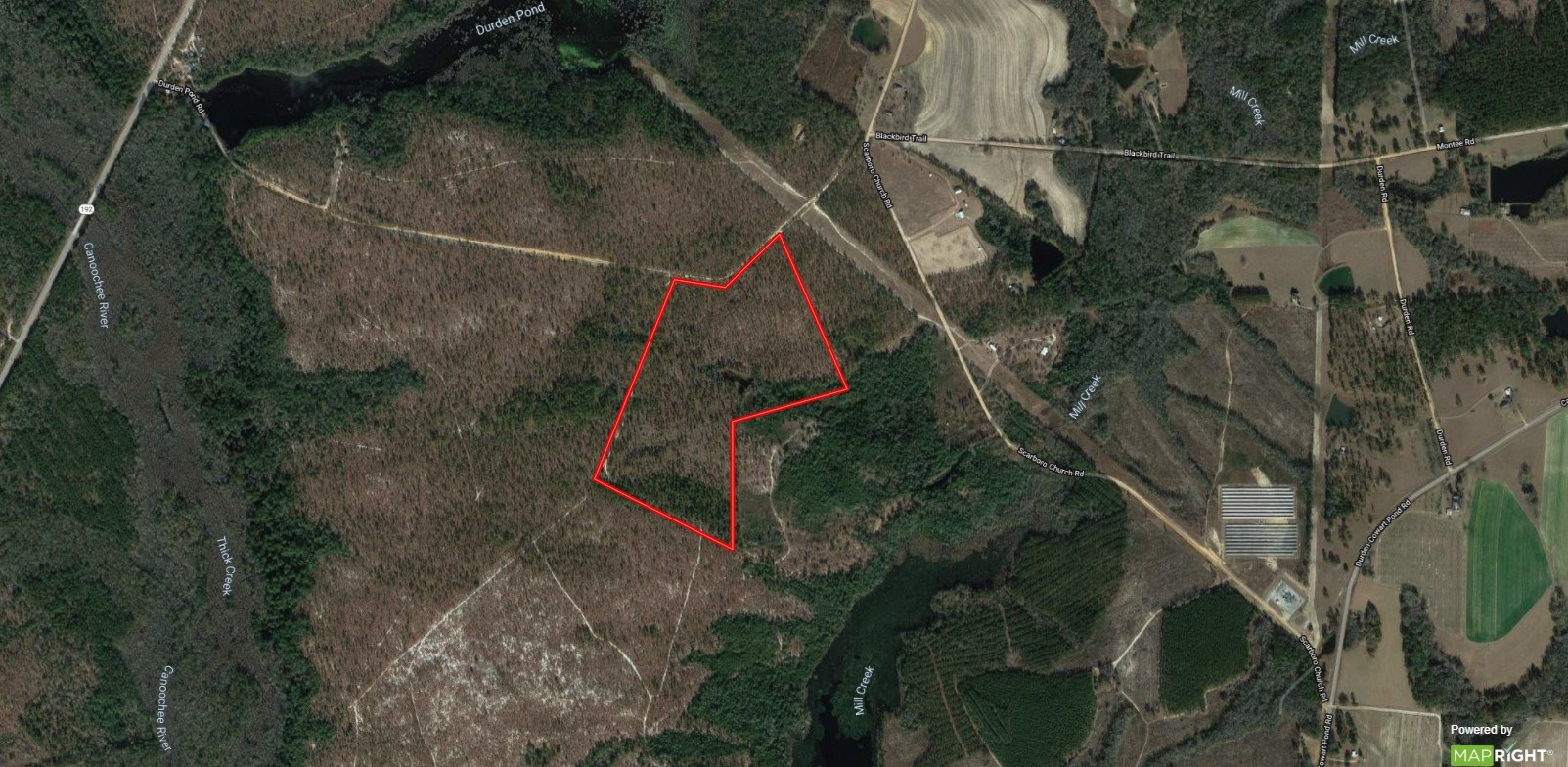 58 Acres for Sale in Emanuel County