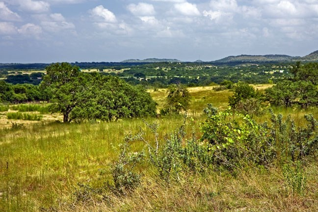Land for sale in Johnson City, Tx