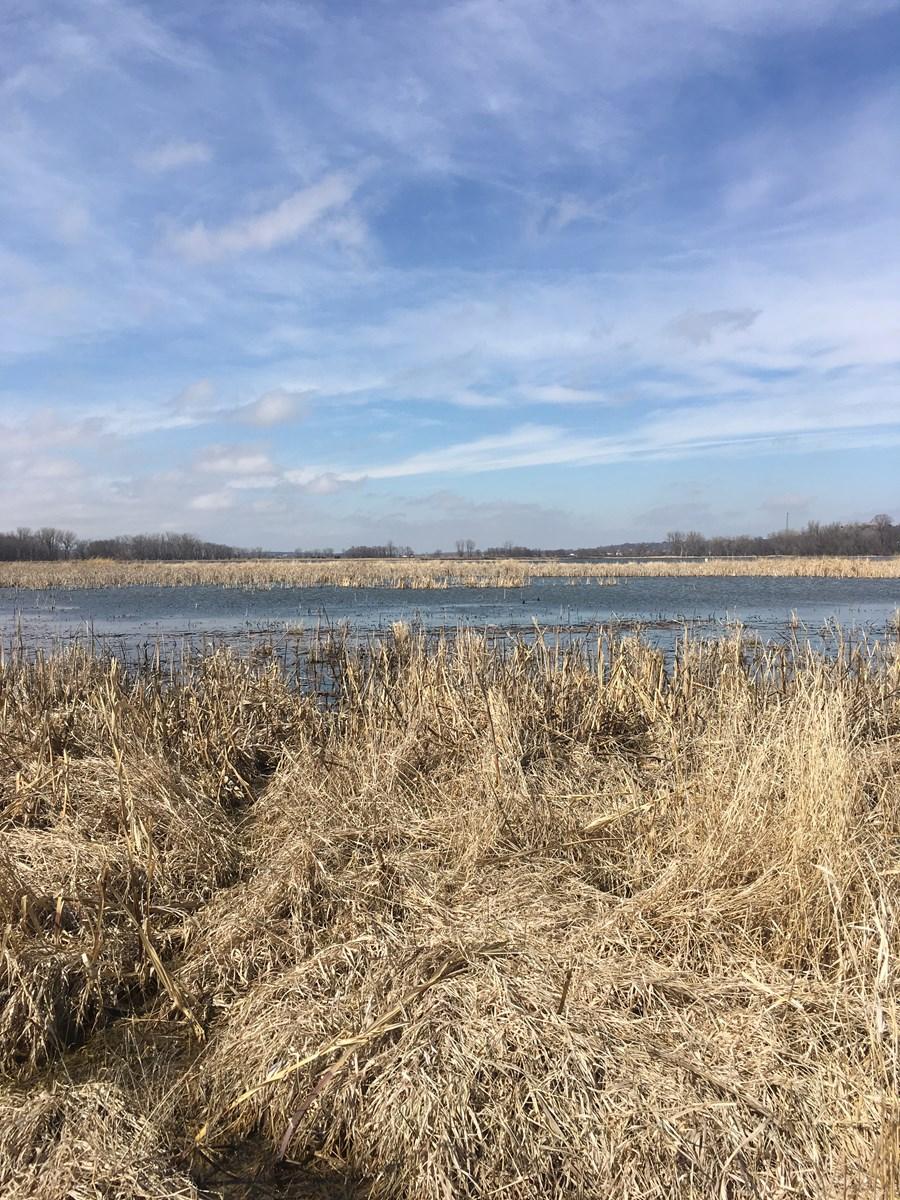 Rare Opportunity! 40+/- Acre Farm Adjoining Wildlife Refuge
