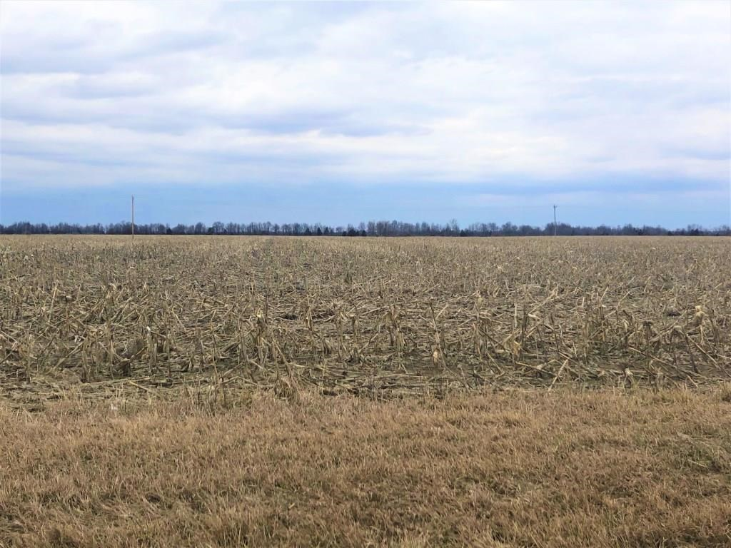 INVESTMENT GRADE TILLABLE ROW CROP FARM IN AUDRAIN CO., MO