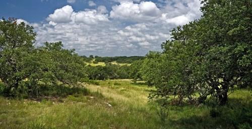 Land For Sale Near Fredericksburg, Texas