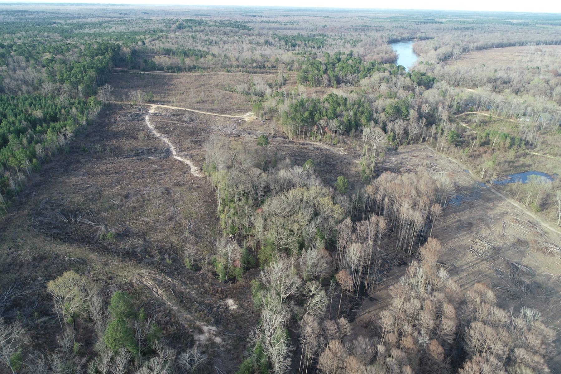 Cleared Land W/ Hardwood Bottoms to Hunt near River for Sale