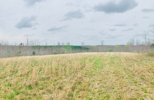 Land for Sale with Breathtaking Views in Hampshire, TN