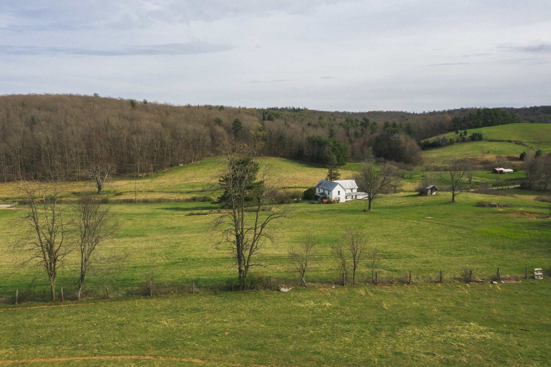 Beautiful Farm for Sale in Floyd VA!