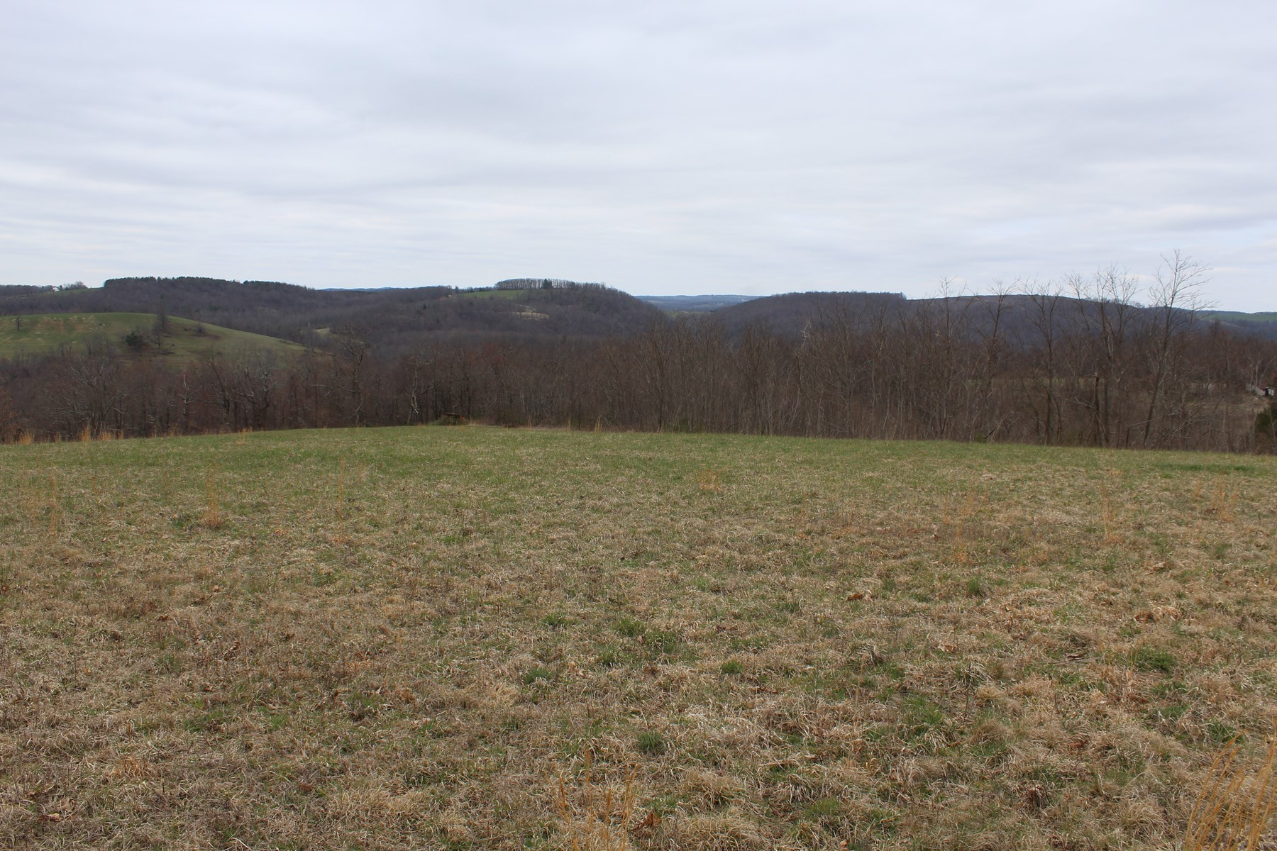 30.6 ACRES OF LAND FOR SELL IN PATRICK COUNTY, VIRGINIA