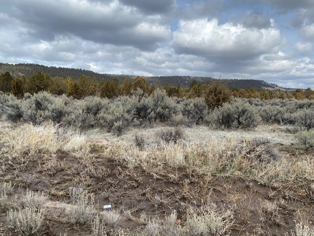 1.47 acres of raw land. Views of Mountains.