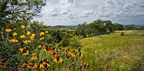 Land for sale Near Johnson City Texas