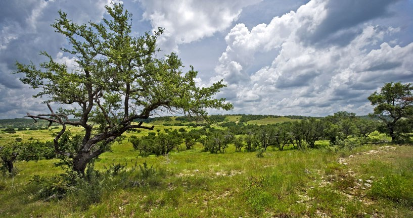 Acreage for Sale in Blanco County, Texas