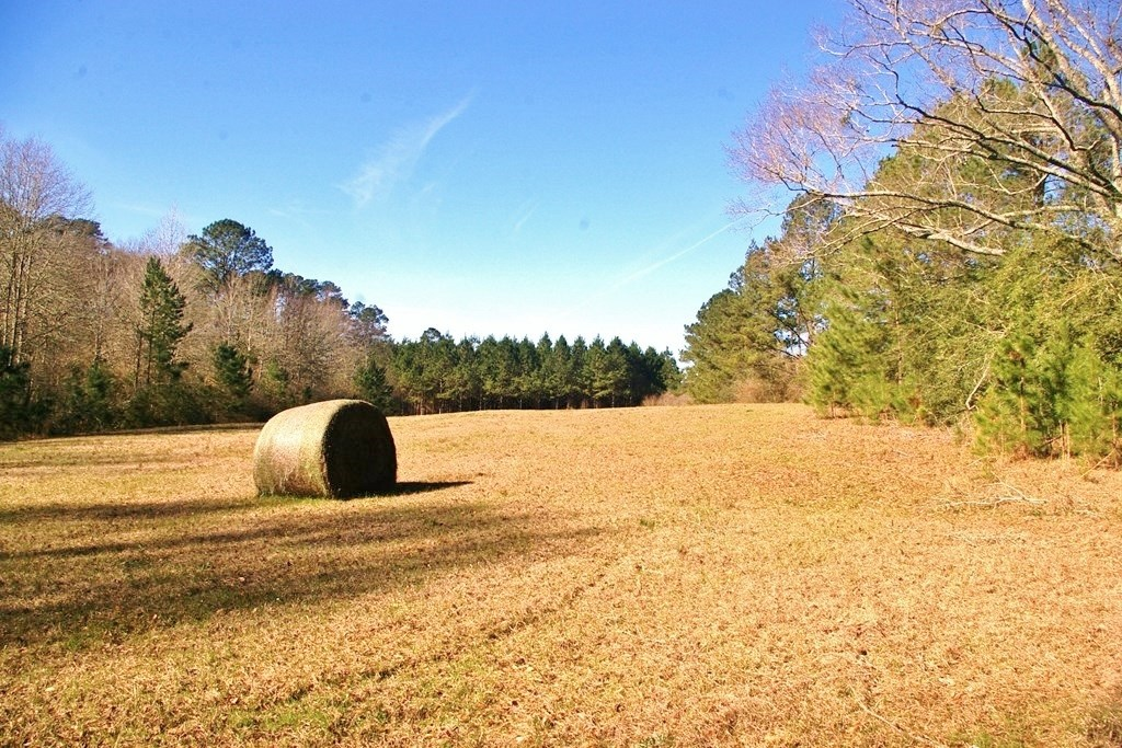 41.17 acres in North Pike School District, Summit, SW MS
