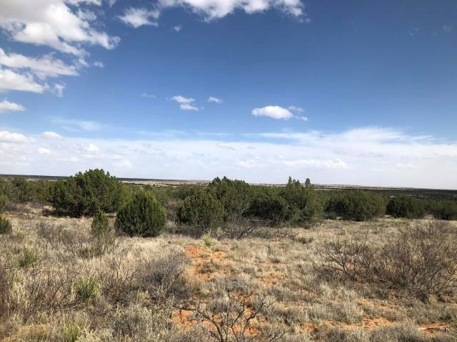 Santa Rosa New Mexico Recreational Residential Land For Sale