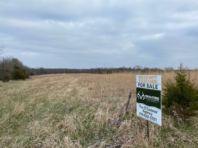 DAVIESS COUNTY MO 10 ACRES FOR SALE
