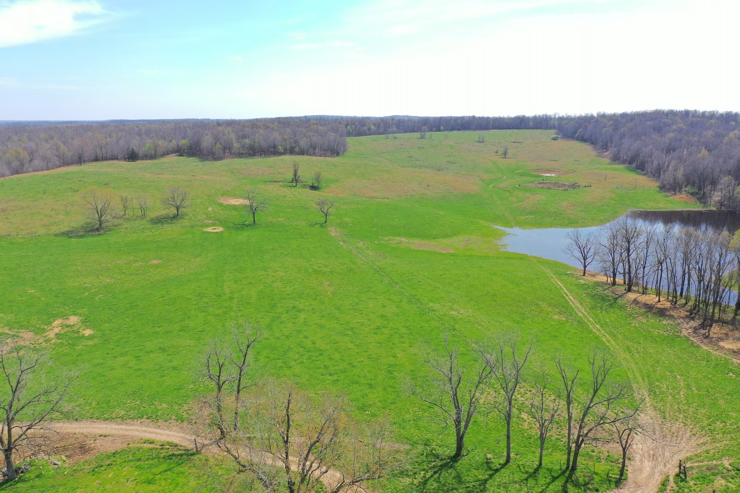 Farm for Sale in the Ozarks