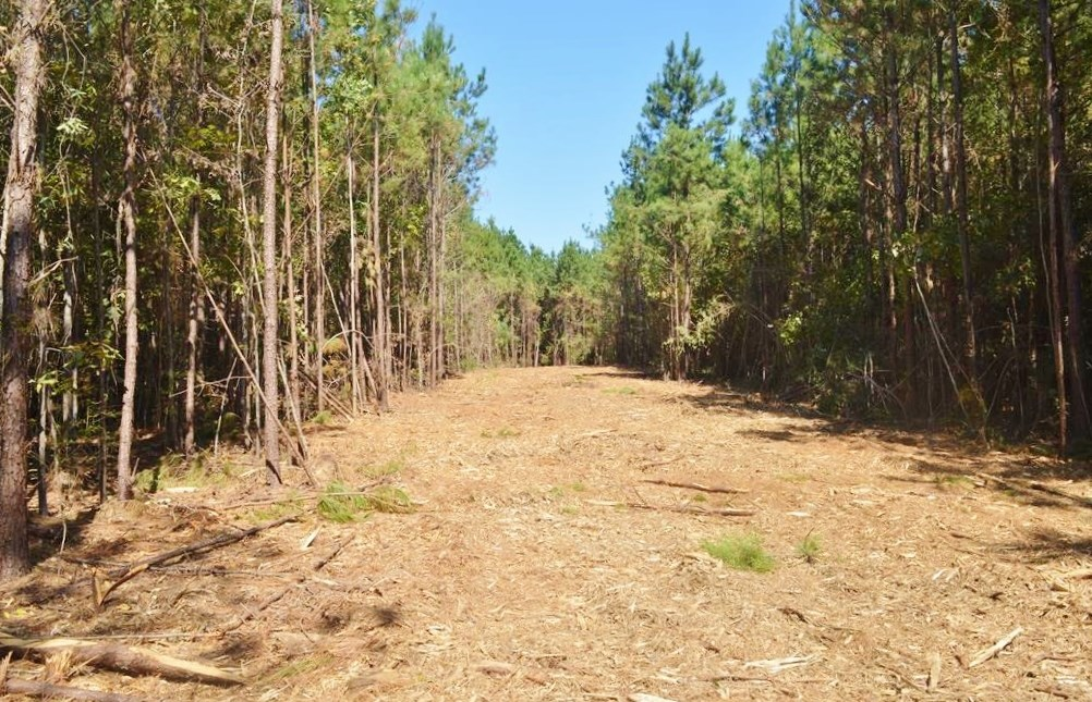 Small Acreage, Mobile Home, 3.01 Acres West of McComb MS