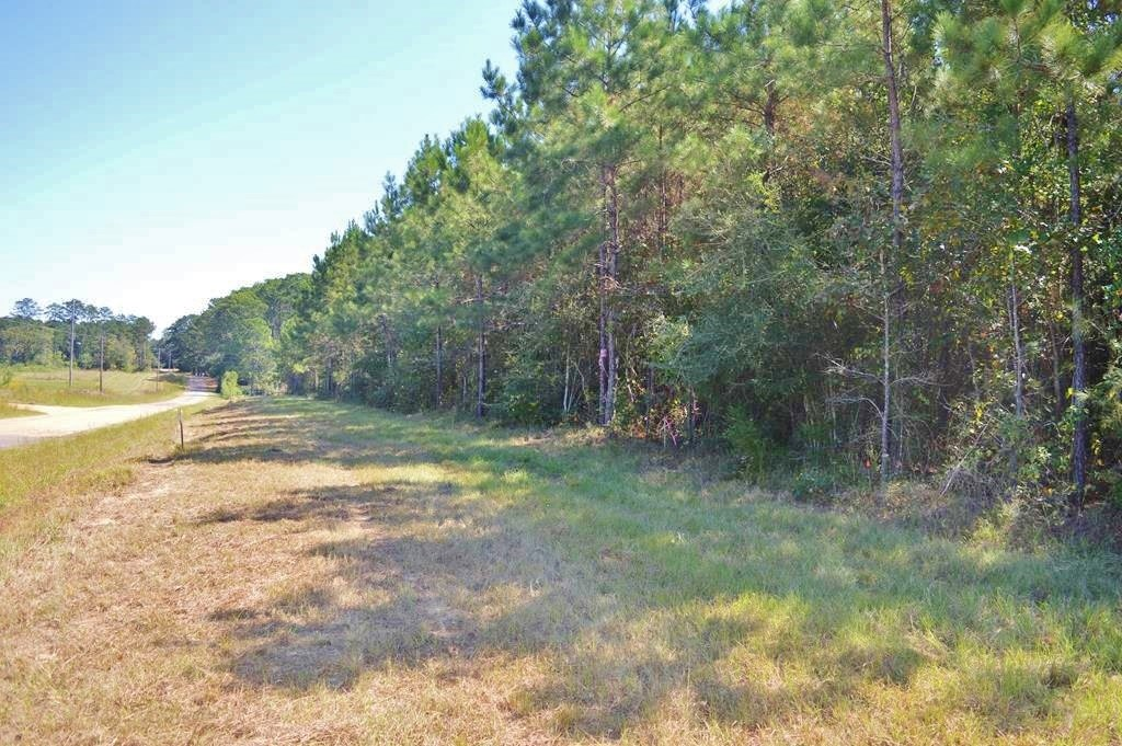 Small Acreage in the Country for Sale 3.02 Acres, McComb, MS