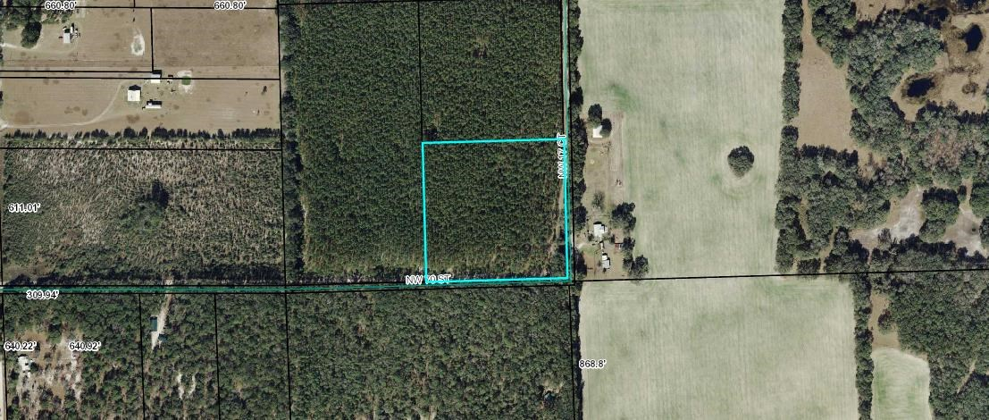 Beautiful 10 acre parcel of baby pines