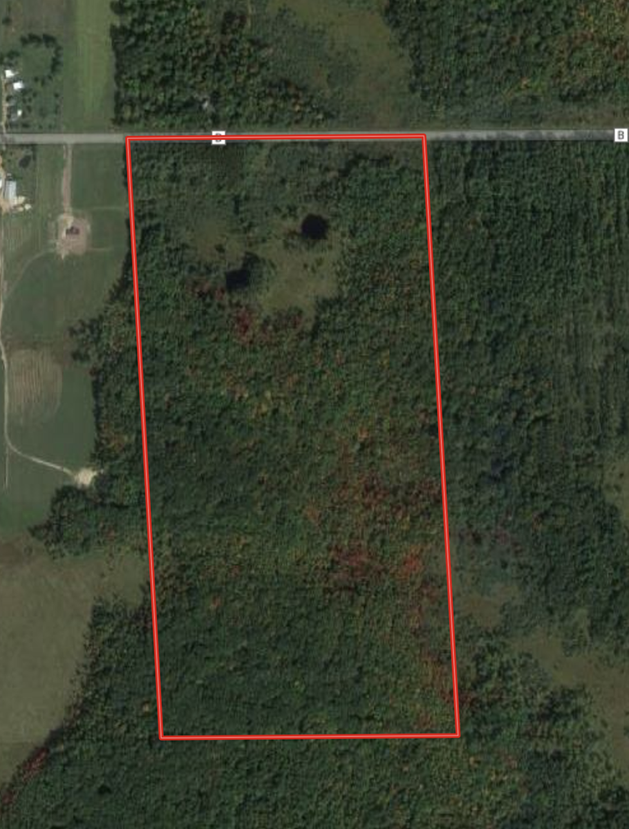80 Ac Hunting Land Wood County, Pittsville WI