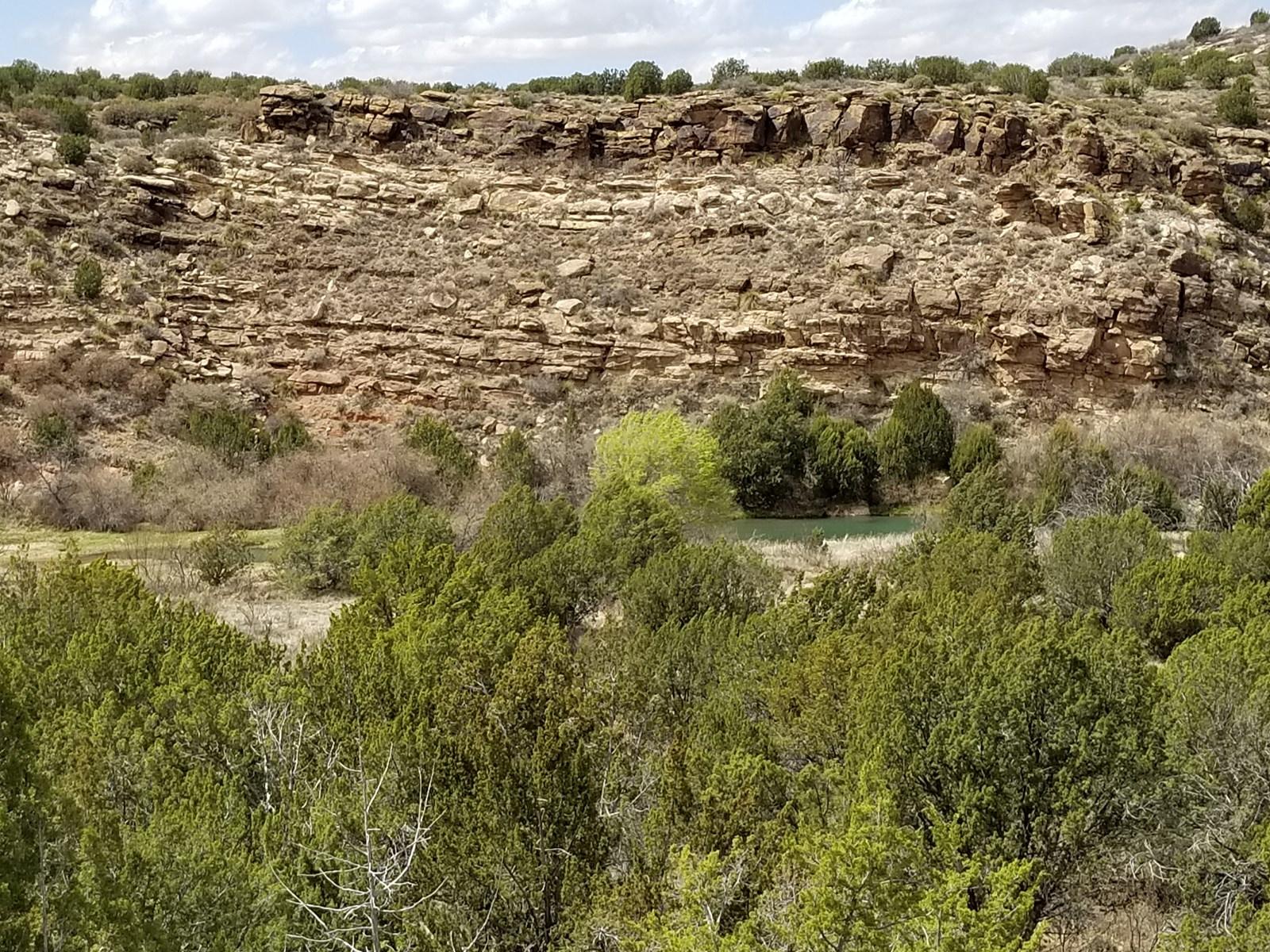 Pecos River Ranch Santa Rosa Hunting Fishing View