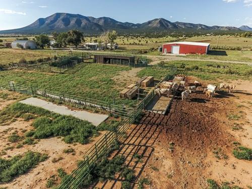 Edgewood, NM Grazing Land 80 Acres X-Fenced & Water