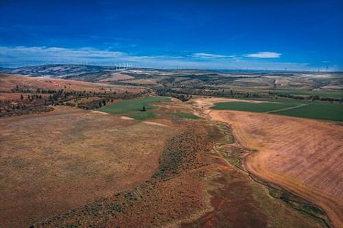 Premier equestrian Land for sale Goldendale Washington
