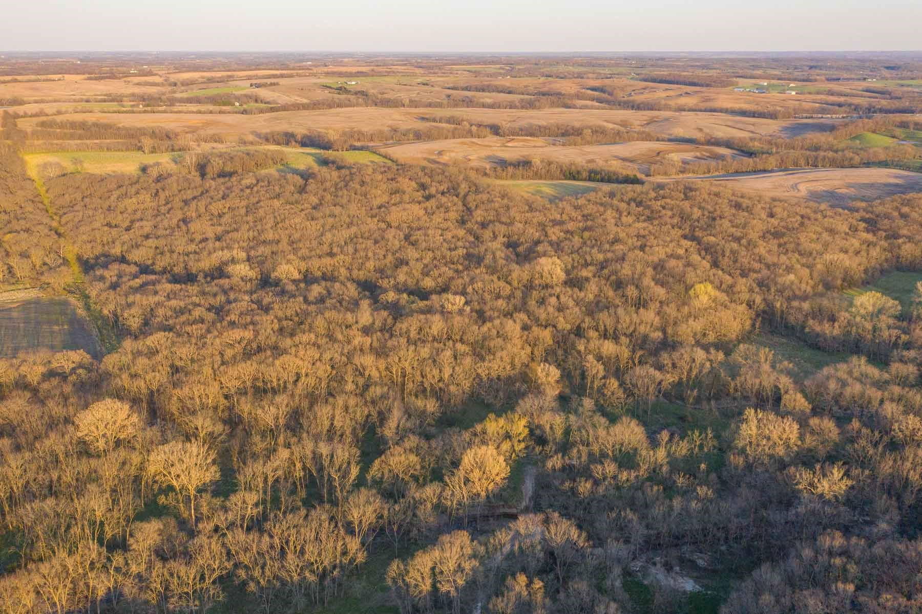 For Sale 243 Acre m/l Hunting Farm in Gentry County