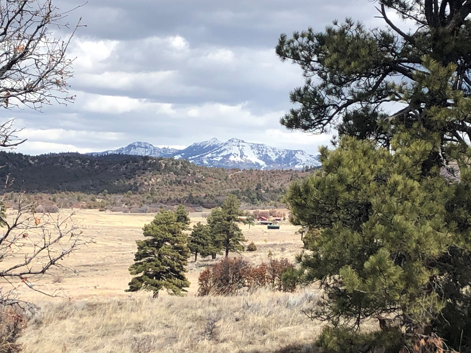 Chama New Mexico Horse Property With Acreage For Sale