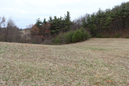 25.7  ACRES OF LAND WITH  POND LOCATED IN PATRICK COUNTY, VA