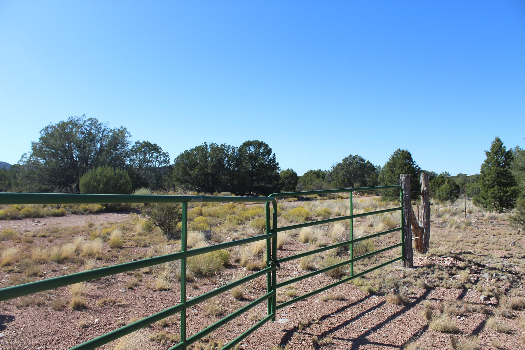Fully Fenced Land with Horse Facilities For Sale
