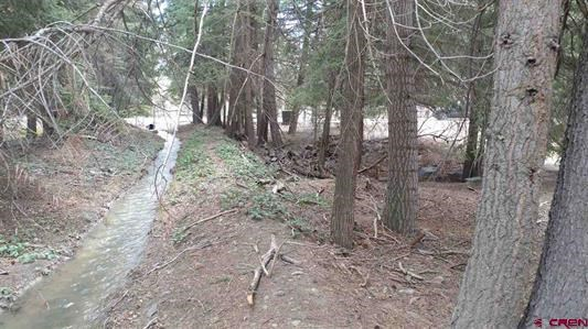 Nicely Treed Lot For Sale, Ouray, Colorado