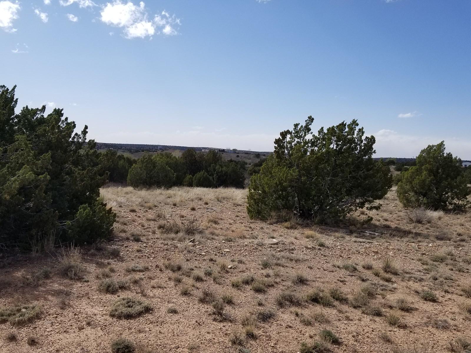 Pecos River Acreage  Santa Rosa Investment Property
