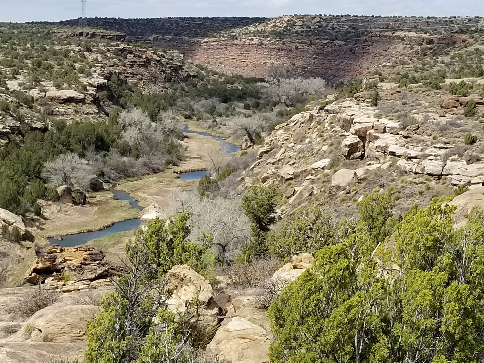 Pecos River Ranch Santa Rosa Hunting Fishing View