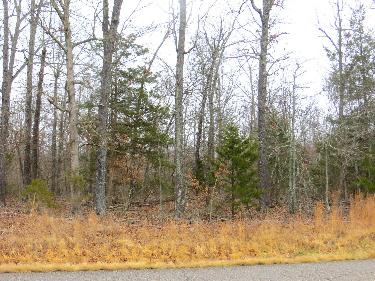 Land for Sale in Midway, Arkansas