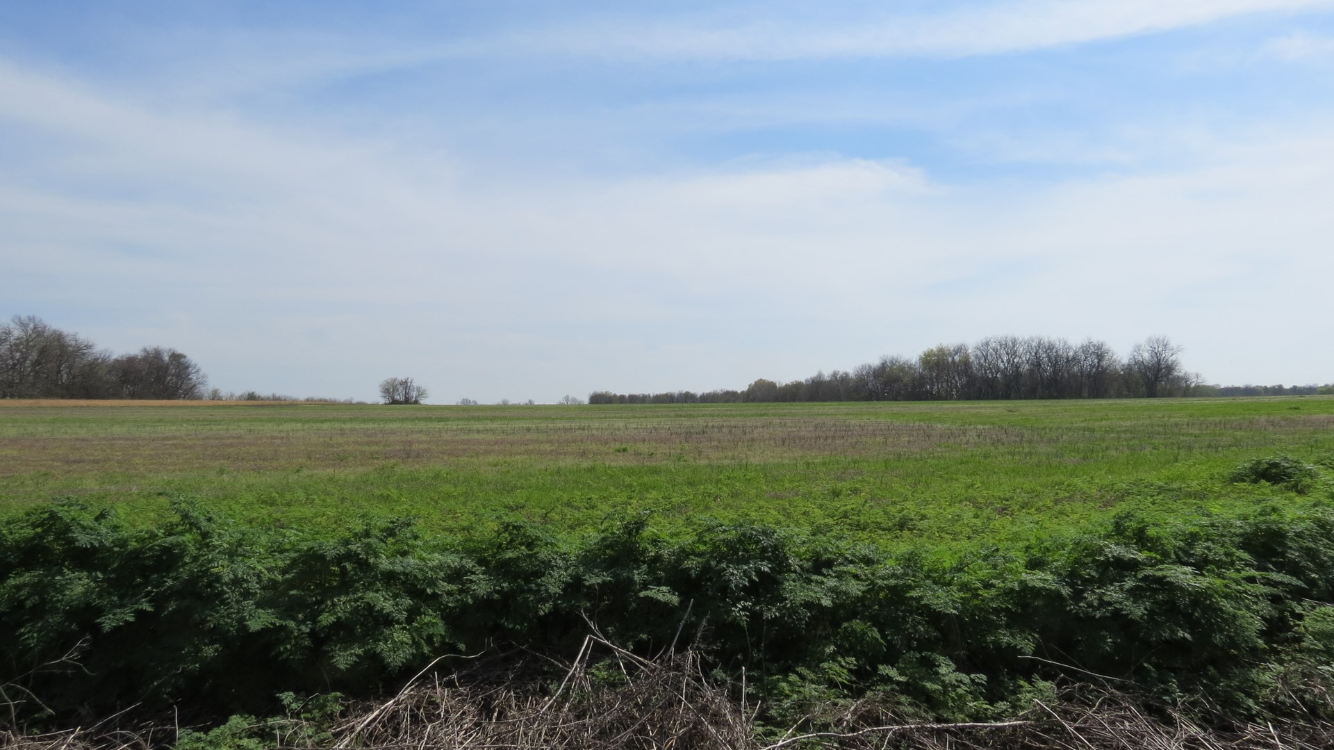Farm and Recreational Land For Sale in Barton County, MO