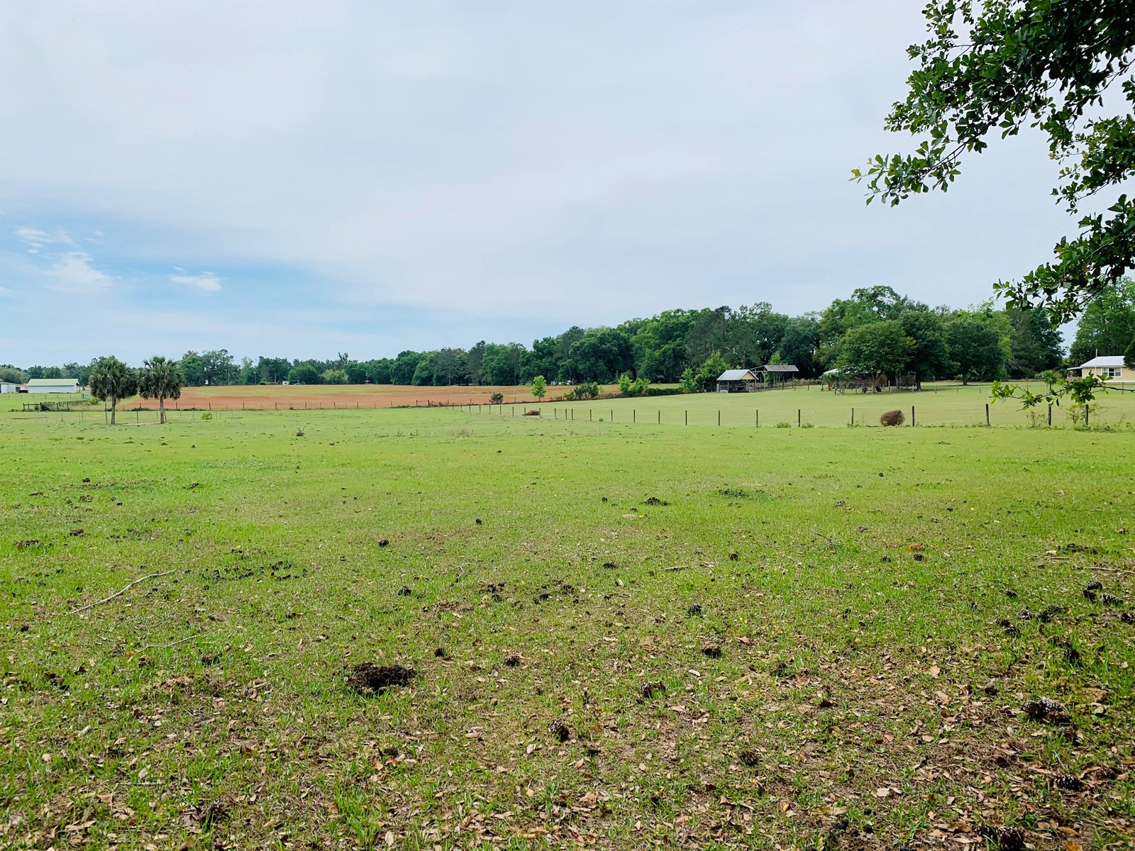4.3 ACRES WITH WELL FOR SALE LAKE CITY, FL