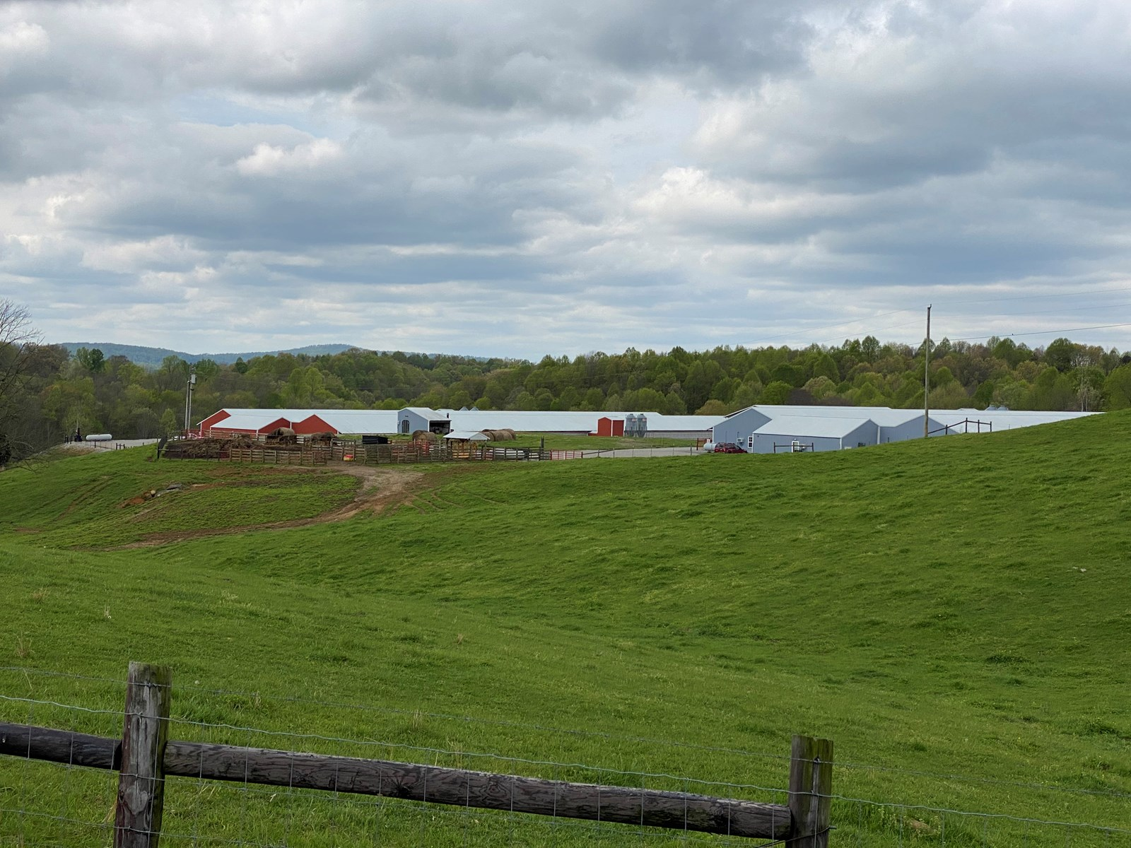 SOLD  SOLD  Poultry Farm For Sale in Albany, KY
