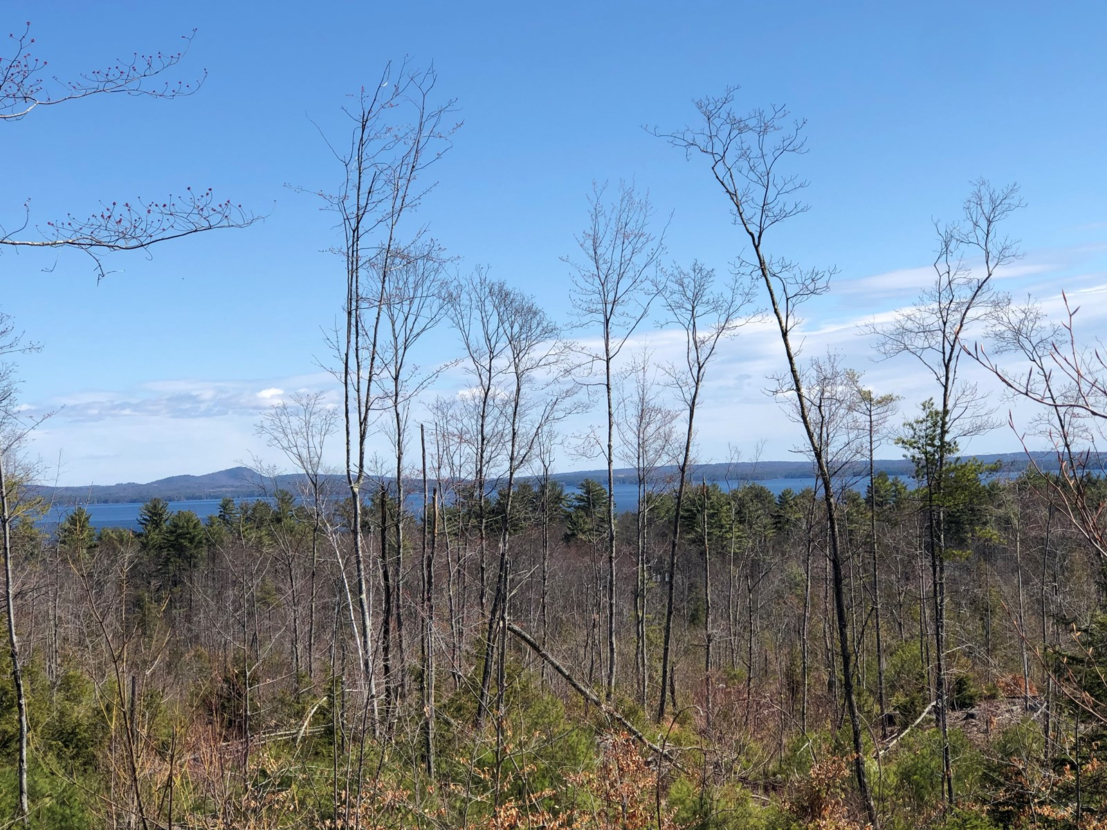 Recreational Land For Sale in Sebago, Maine
