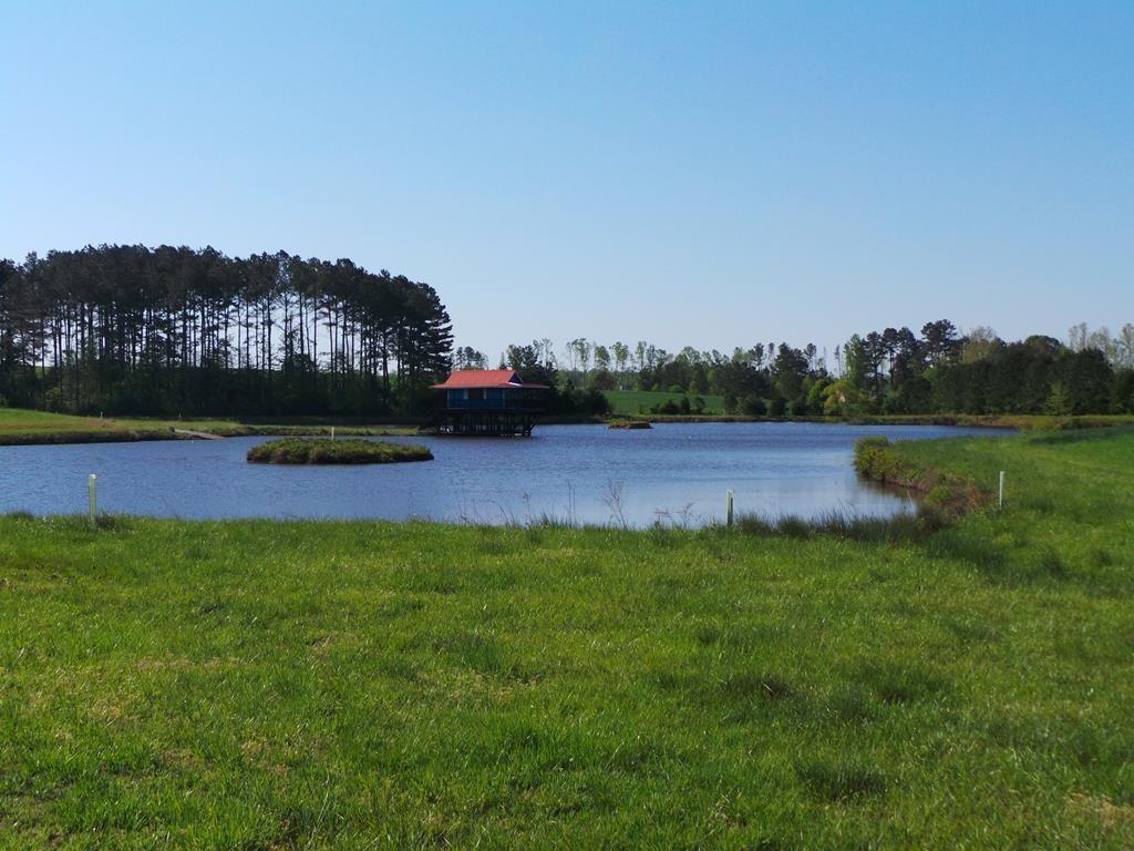 Clear View Farm Near Kerr Lake, VA