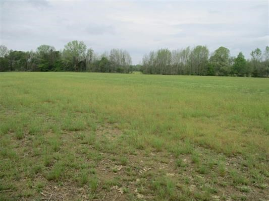 Excellent 30 Acre Cropland in McNairy County near Hwy 45