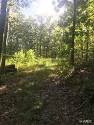 37 WOODED ACRES WITH HWY. FRONTAGE: