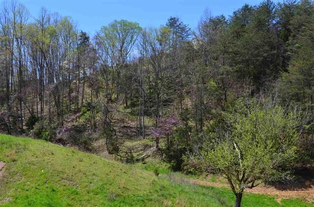 146.93 Surveyed Acres For Sale in Thorn Hill, TN